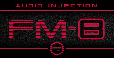 Audio Injection FM8